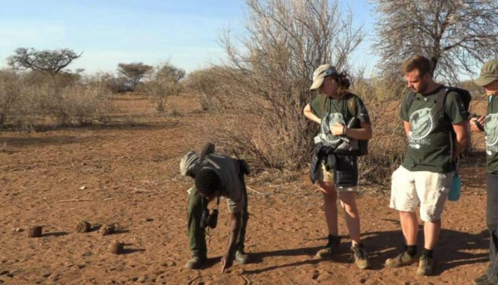 rhino-rangers-namibia-tracking-prints
