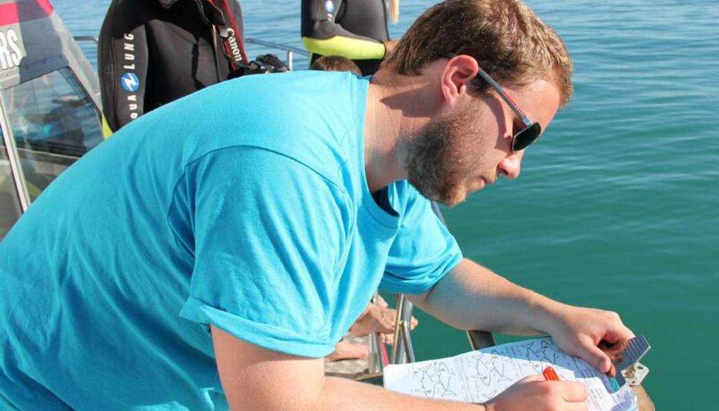 shark-conservation-researcher